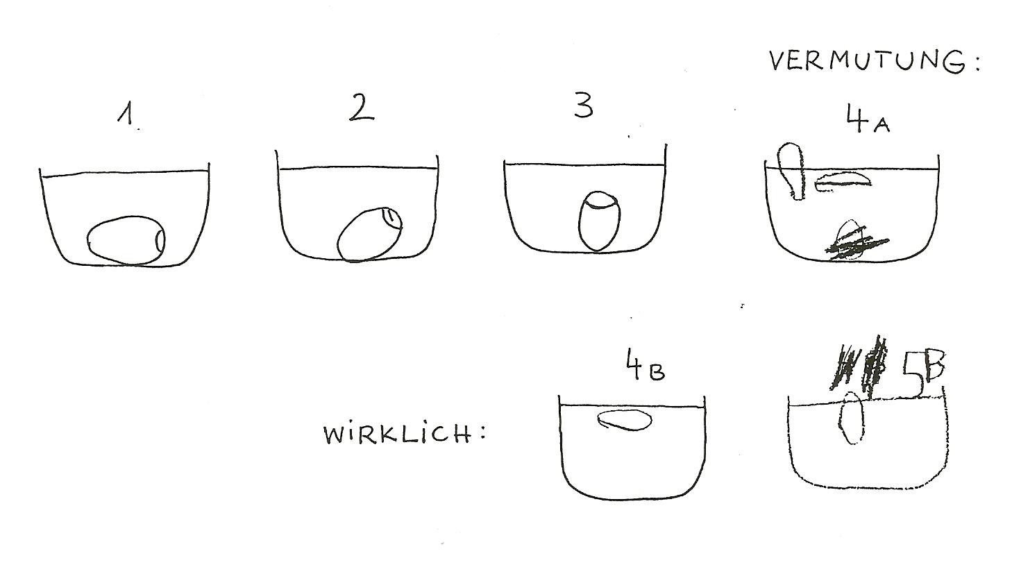 Großzügig Wissenschaft 8 Zustände Der Materie Arbeitsblatt Fotos ...